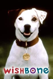 Streaming sources for Wishbone