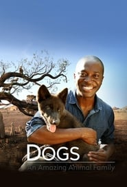 Streaming sources for Dogs An Amazing Animal Family