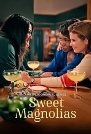 Streaming sources for Sweet Magnolias