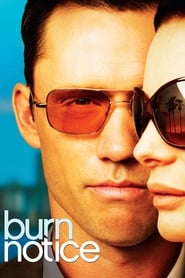 Streaming sources for Burn Notice