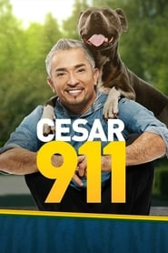 Streaming sources for Cesar 911