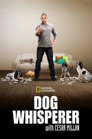 Streaming sources for Dog Whisperer