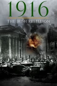 1916 The Irish Rebellion Poster