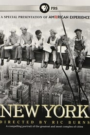 Streaming sources for New York A Documentary Film