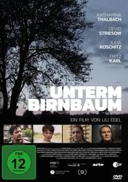 Streaming sources for Unterm Birnbaum