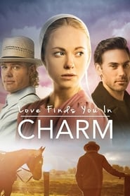 Streaming sources for Love Finds You in Charm