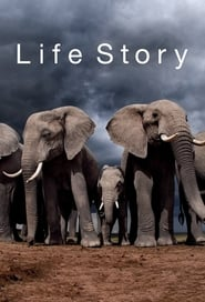 Streaming sources for Life Story