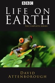 Streaming sources for Life on Earth