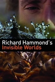 Streaming sources for Richard Hammonds Invisible Worlds