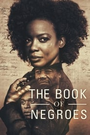 Streaming sources for The Book of Negroes
