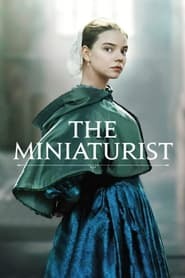 Streaming sources for The Miniaturist