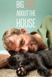 Big Cats About The House Poster