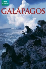 Streaming sources for Galapagos