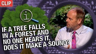 QI  If A Tree Falls In A Forest And No One Hears It Does It Make A Sound