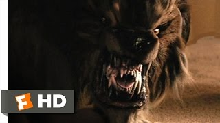 Cursed 49 Movie CLIP  From Dog to Werewolf 2005 HD