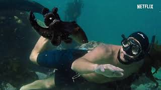 My Octopus Teacher Official Trailer 2020